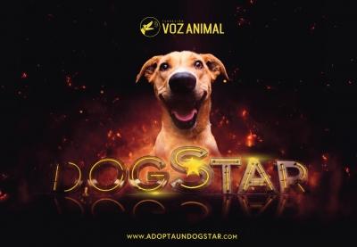 Adopta un Dogstar