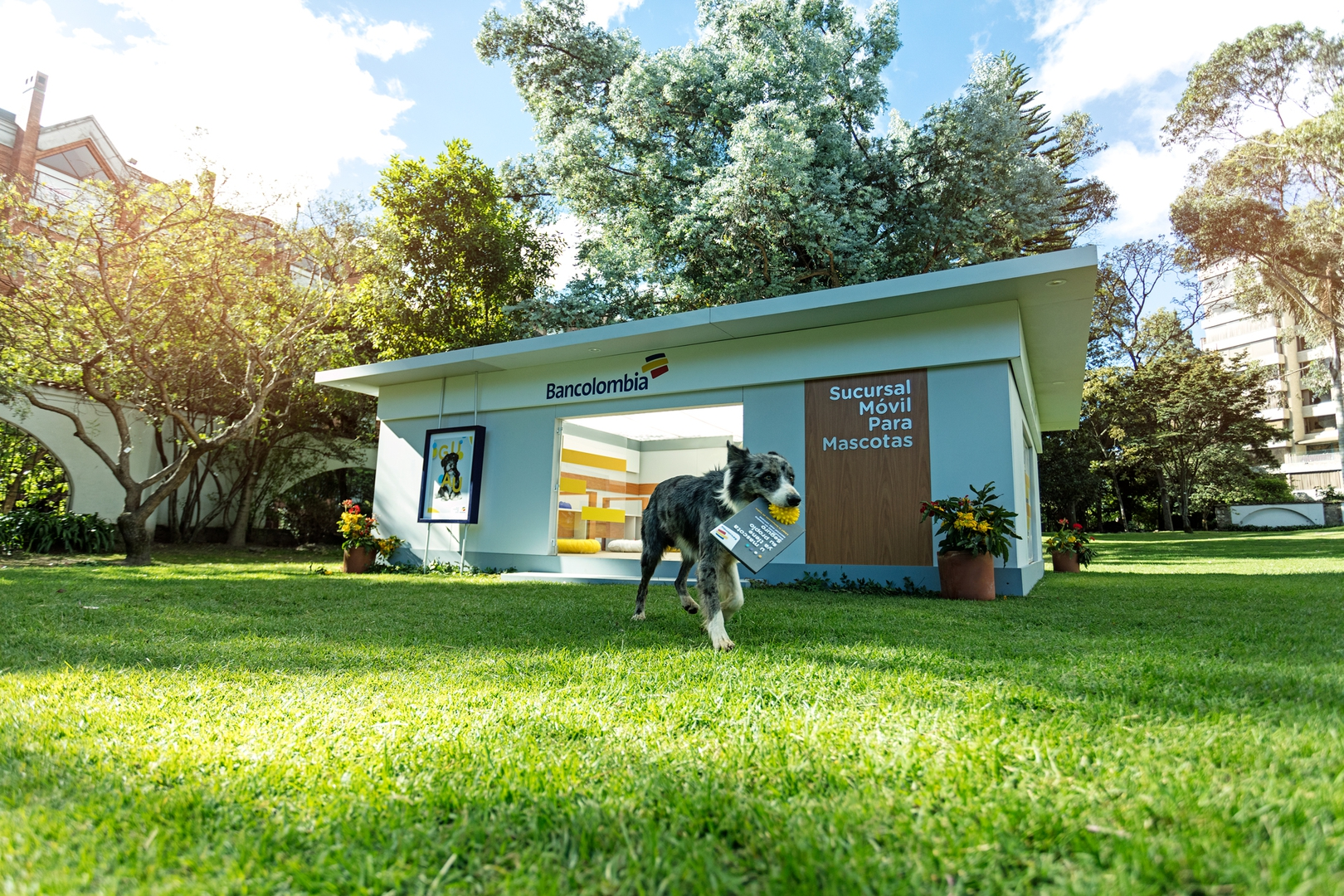 El  primer banco para mascotas Guaw